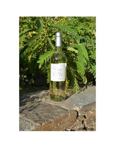 COTES DE PROVENCE CAMP DU DOMAINE AOP BLANC - Vins & Champagne