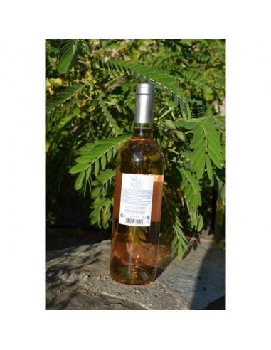COTES DE PROVENCE CAMP DU DOMAINE AOP ROSE - Vins & Champagne